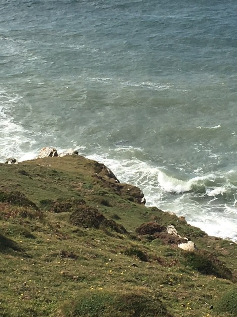 These a seal there somewhere